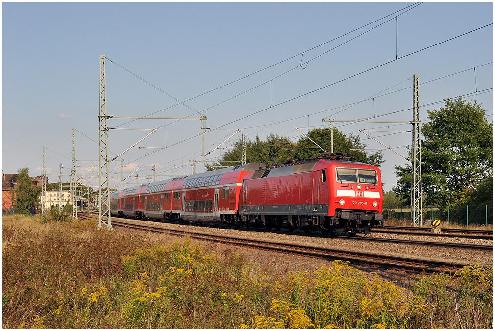 http://www.ssdw.de/2009/DSC_1823.jpg