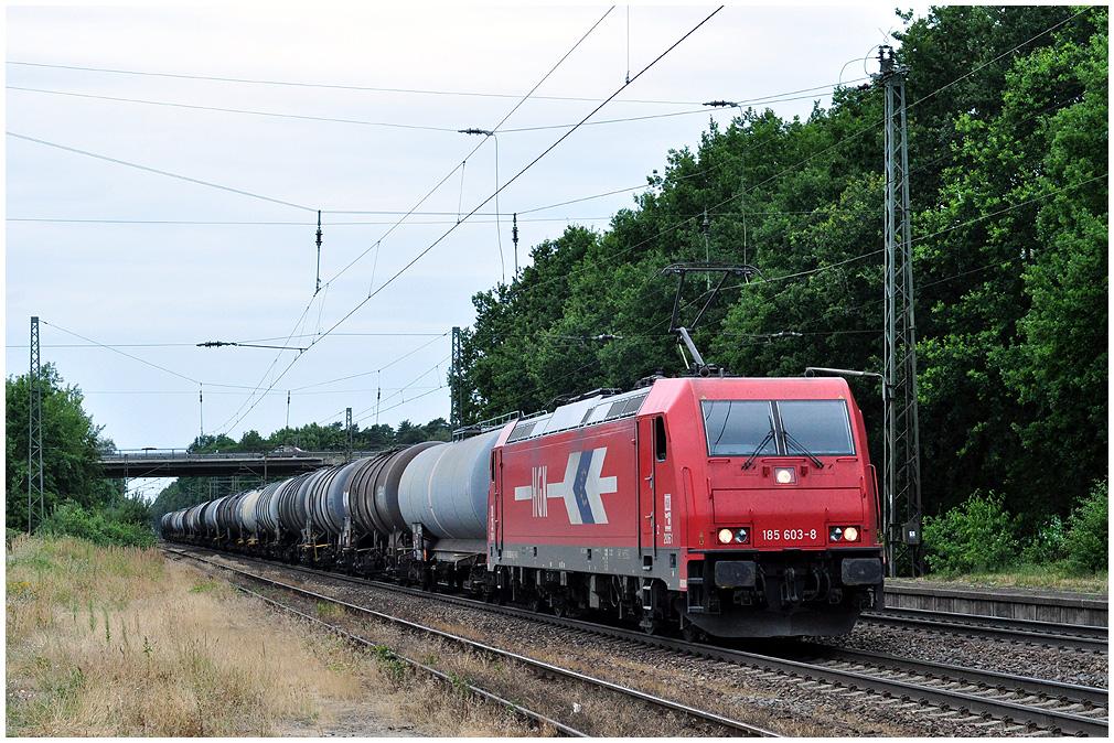 http://www.ssdw.de/2010/DSC_8585.jpg